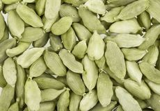 Cardamom whole Royalty Free Stock Photography