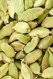 Cardamom whole Royalty Free Stock Image