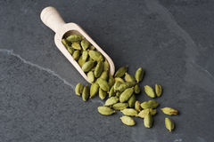Cardamomo Fotos de Stock