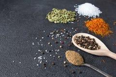 Cardamomo, açafrão, coentro, pimenta, alho, sal no CCB preto Fotos de Stock Royalty Free