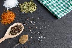 Cardamomo, açafrão, coentro, pimenta, alho, sal no CCB preto Imagens de Stock Royalty Free