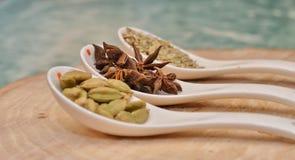 Cardamomo, anis de estrela e sementes de erva-doce verdes na colher cerâmica branca Foto de Stock Royalty Free
