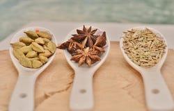 Cardamomo, anis de estrela e sementes de erva-doce verdes na colher cerâmica branca Fotografia de Stock Royalty Free