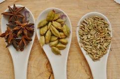Cardamomo, anis de estrela e sementes de erva-doce verdes na colher cerâmica branca Imagens de Stock