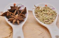 Cardamomo, anis de estrela e sementes de erva-doce verdes na colher cerâmica branca Imagem de Stock Royalty Free