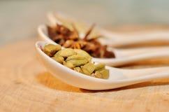 Cardamomo, anis de estrela e sementes de erva-doce verdes na colher cerâmica branca Imagens de Stock Royalty Free