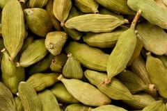 Cardamomo verde (cardamomum di Elettaria) Fotografia Stock Libera da Diritti