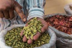 Cardamomo verde nas mãos de um homem fotografia de stock royalty free
