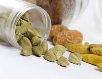 Cardamoms Stock Photos