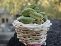 Cardamom in bamboo basket. Green cardamom in bamboo basket royalty free stock photography
