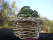 Cardamom in the basket. Green cardamom in small bamboo basket royalty free stock photos