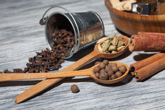 Cardamon, clove and pepper in spoons on wood Royalty Free Stock Photo