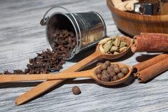 Cardamon, kryddnejlika och peppar i skedar på trä royaltyfri foto