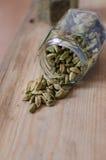 Cardamon seeds in a jar royalty free stock photos