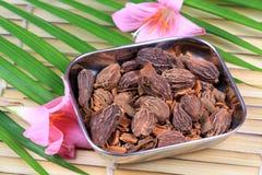 Cardamon spice. With beautiful background Stock Photo