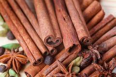 Cardamon spice cinamon Stock Image