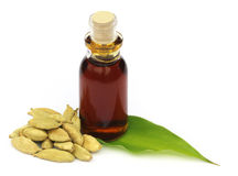 Cardamons with essential oil Stock Image
