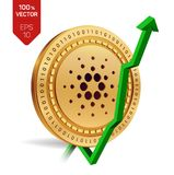Cardano. Growth. Green arrow up. Cardano index rating go up on exchange market. Crypto currency. 3D isometric Physical Golden coin. Isolated on white background Royalty Free Stock Photo