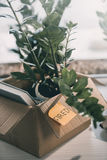 Cardboard box with books plant and sticky note with word fired Stock Images