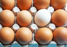 A cardboard box with chicken eggs is brown and white. Distinctive feature. Differences. Royalty Free Stock Images