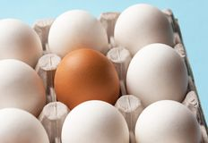 A cardboard box with chicken eggs is brown and white. Distinctive feature. Differences. A cardboard box with chicken eggs is brown and white. Distinctive Royalty Free Stock Photography