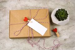 Cardboard box with cloth pin with red heart and empty white label with place for text and succulent. Top view cardboard box with cloth pin with red heart and royalty free stock photography