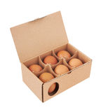 Cardboard box with eggs Stock Image