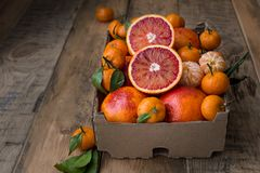 A cardboard box of fresh winter fruits with red oranges and mini tangerines. royalty free stock photography