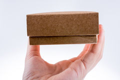 Cardboard Box. Hand holding cardboard Box on a white background Stock Photography