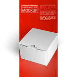 Cardboard box mockup-01 Royalty Free Stock Photos