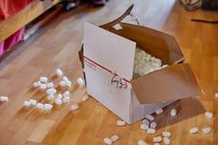 Cardboard box open. Open cardboard box polystyrene protective packaging around Stock Photo