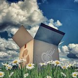 Cardboard box with recycle sign Stock Photography