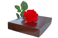 Cardboard box and a rose Royalty Free Stock Image
