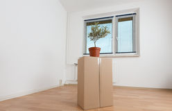 cardboard boxes in an empty apartment Royalty Free Stock Images