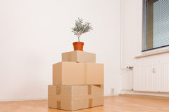 Cardboard boxes in an empty apartment Royalty Free Stock Photo
