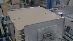Cardboard boxes fixed on production line at modern palnt stock footage
