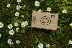 Cardboard camera and little flowers, horizontal. Cardboard camera and little flower background Stock Photo