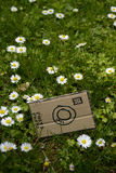 Cardboard camera and little flowers, vertical. Cardboard camera and little flower background Stock Photo