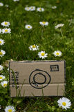 Cardboard camera and little flowers, vertical Royalty Free Stock Photo