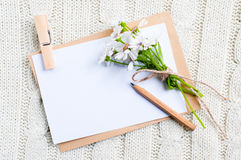 Cardboard card with flowers Royalty Free Stock Photos