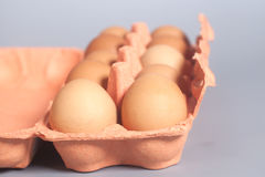 Cardboard egg box with brown eggs on gray Stock Images