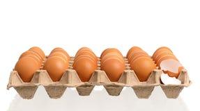 Cardboard egg Stock Photography