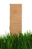 Cardboard in the Grass Stock Photo