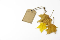 Cardboard price tags and the maple leaf on a white background Stock Images