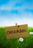 Organic Sign, Natural Land Stock Images