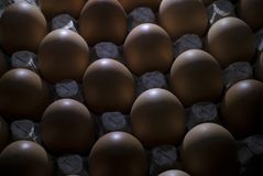 Cardboard tray with chicken brown eggs, in a low key, with lighting behind. Brown chicken eggs in a gray cardboard container close-up Royalty Free Stock Photography