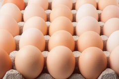 Cardboard tray with eggs Royalty Free Stock Photo