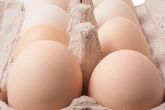 Cardboard tray with eggs Royalty Free Stock Photography