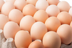 Cardboard tray with eggs Royalty Free Stock Images