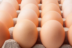 Cardboard tray with eggs Stock Images